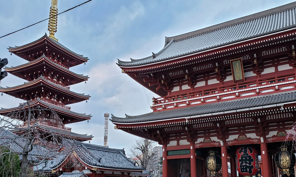 Traditional Tokyo! Weekday's City tour